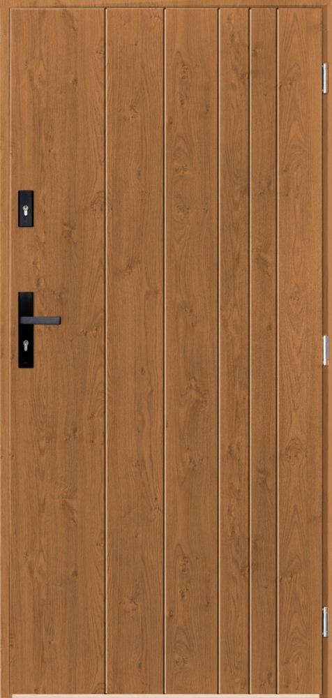 Sta Gutenberg - puertas de entrada modernas